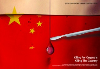 Killing For Organs Is Killing The Country