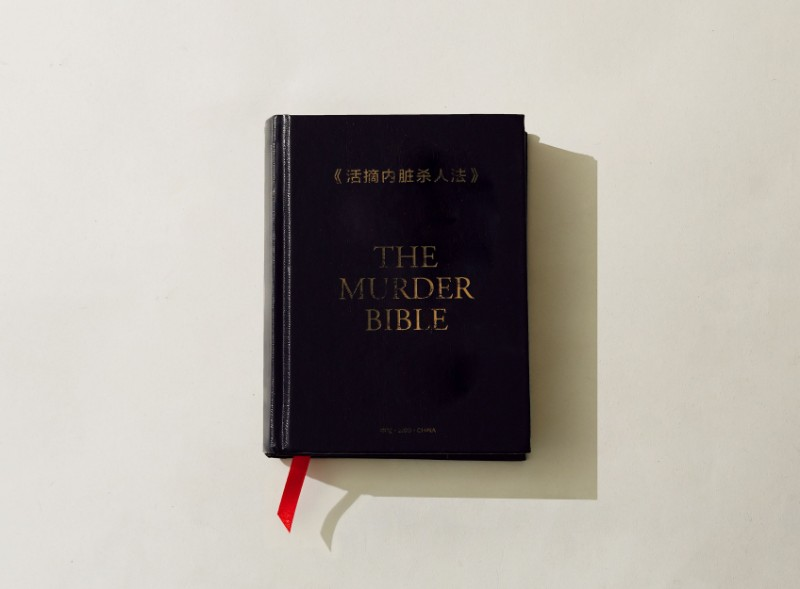 《活摘內臟殺人法》 The Murder Bible/SeriesX2